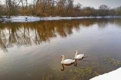 Зимой на реке  Западный Буг.