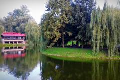 Уютные озерные места города Брест.
