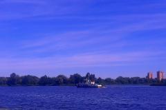 Среди вод реки Мухавец.