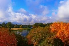 Осенние  краски ...