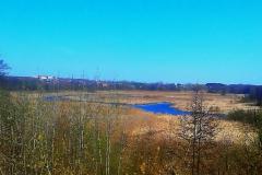 Между озерный  водный канал в  Бресте.
