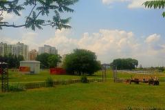 На территории  конно-спортивного  центра.