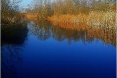 Широкие (похожие на реки)