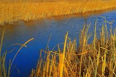 Осенние цвета на каналах.
