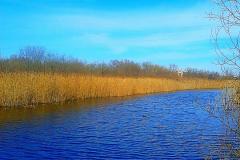 Километровые каналы Бреста.