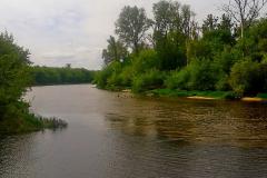 Разделение цветов на сливе двух рек :  Мухавца и  Буга  в городе  Брест.